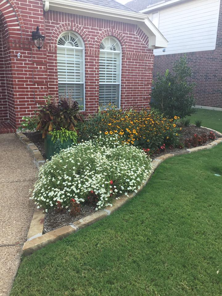 August Yard of the Month