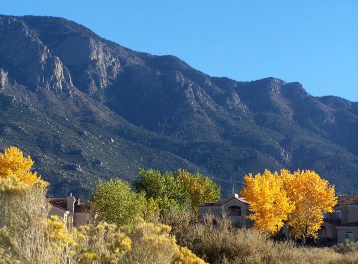 autumn in high desert